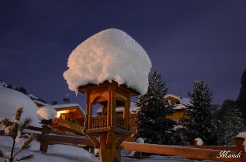 Sognando le Dolomiti